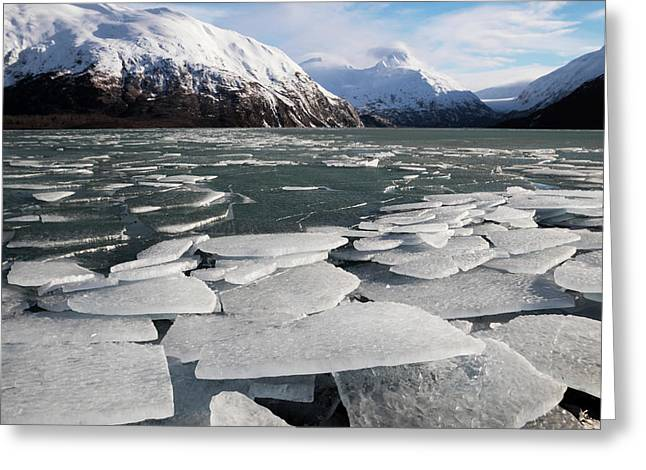 Ice Breakup At Portage Lake Greeting Card by Doug Lindstrand