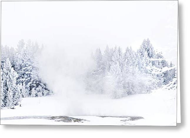 Snow Tree Prints Greeting Cards - Winter Landscape-Ice Cold Greeting Card by Feryal Faye Berber