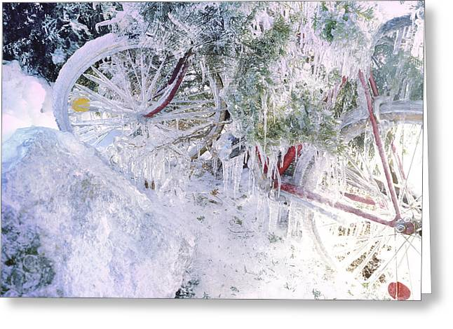 Temperature Greeting Cards - Ice Covered Bicycle Greeting Card by Steve Cicero