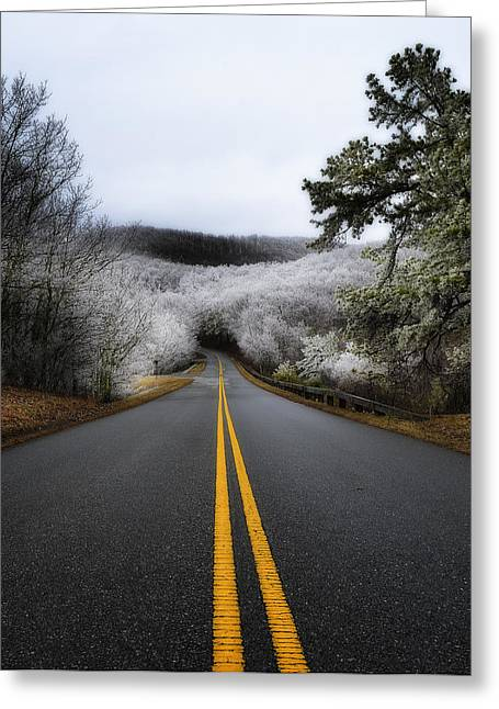 Sleet Greeting Cards - Ice Covered  Greeting Card by Steve Hurt