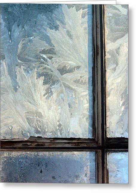 Ice Crystals Greeting Cards - Ice Crystals On Windowpanes Greeting Card by Panoramic Images