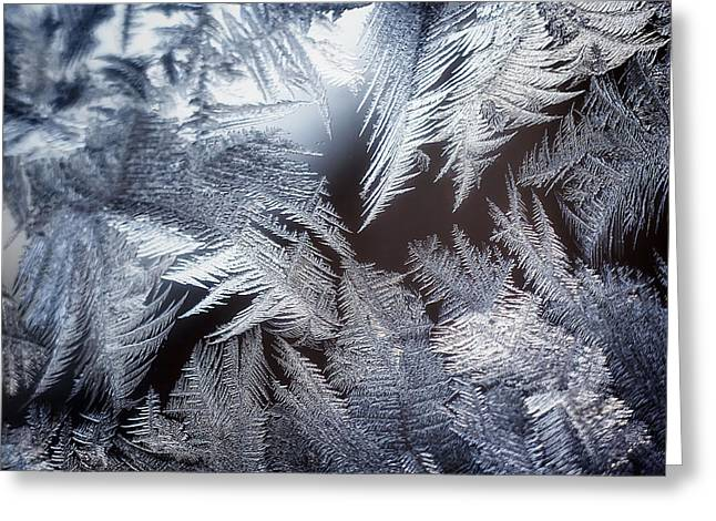 Window Panes Greeting Cards - Ice Crystals Greeting Card by Scott Norris