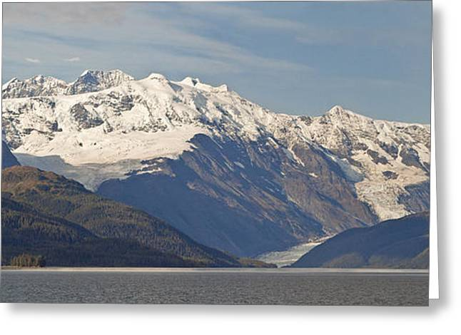 Pristine Coastal Forests Greeting Cards - Ice Fields And Glacier In Chugach Greeting Card by Jeff Schultz