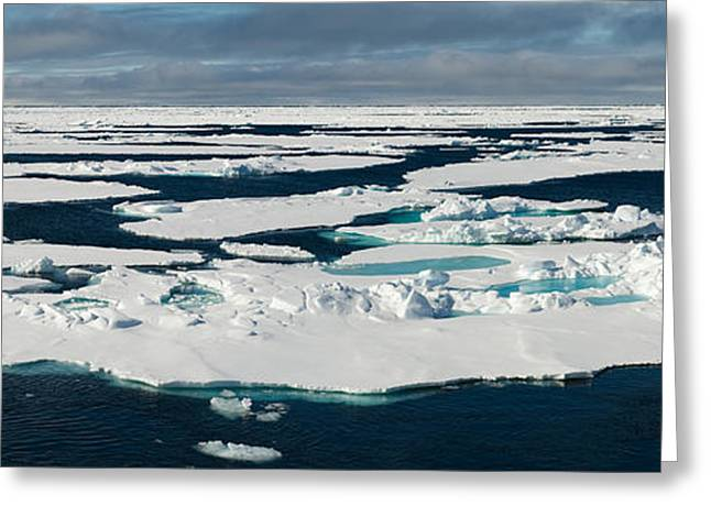 People On Ice Greeting Cards - Ice Floes On The Arctic Ocean Greeting Card by Panoramic Images