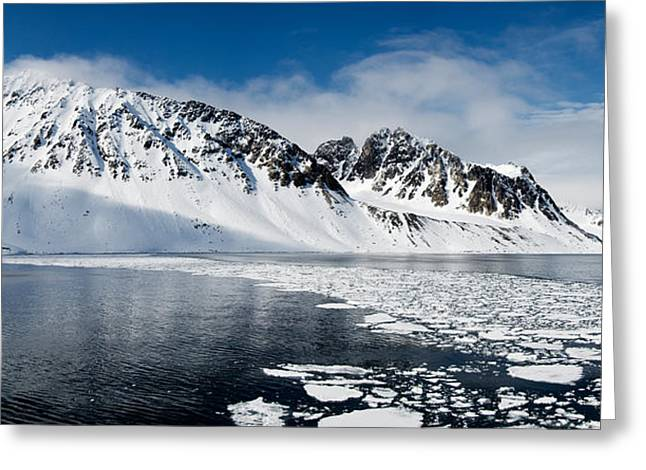 People On Ice Greeting Cards - Ice Floes On Water With A Mountain Greeting Card by Panoramic Images