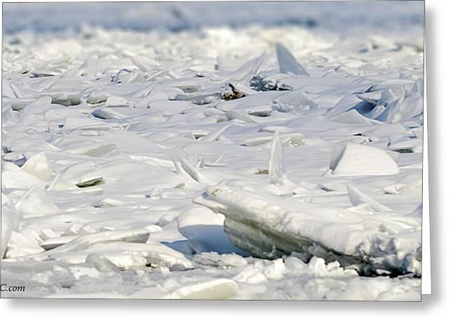 Floating Ice Sheet Greeting Cards - Ice Flow at Algonac Greeting Card by LeeAnn McLaneGoetz McLaneGoetzStudioLLCcom