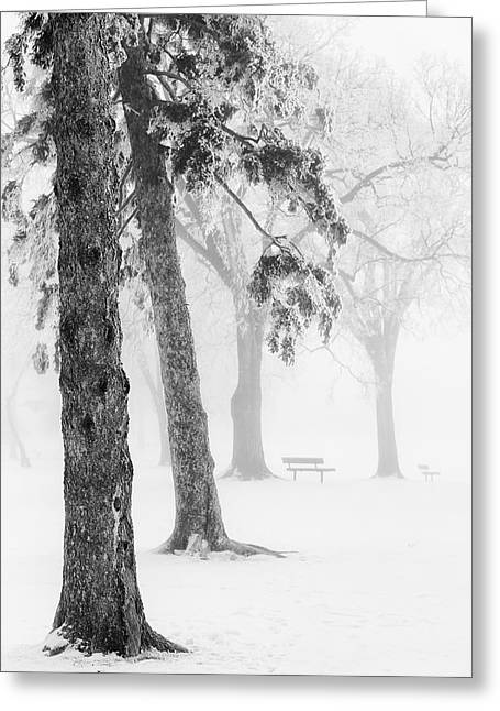Ice Fog Greeting Cards - Ice Fog In Winter Assiniboine Greeting Card by Ken Gillespie
