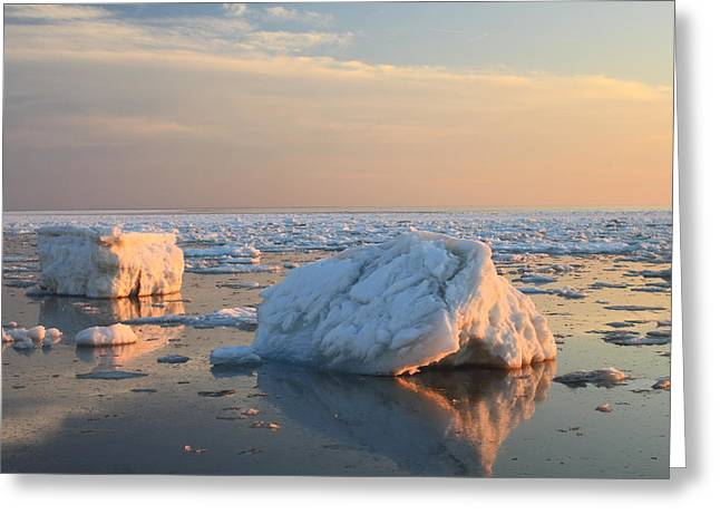 Truro Greeting Cards - Ice in Cape Cod Bay March 2015 Greeting Card by John Burk
