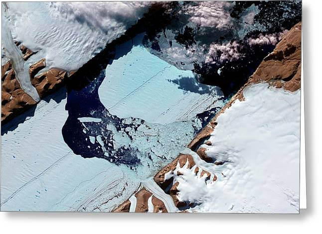 Ice Island From Petermann Glacier Greeting Card by Nasa