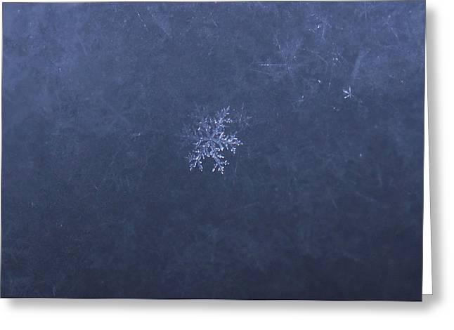 Ice Jewellery Greeting Card by Aivis Ilsters