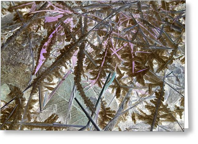 Terra Firma Greeting Cards - Ice Negated Greeting Card by Debbi Chan
