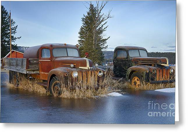 Old Trucks Greeting Cards - Ice o lated Greeting Card by Idaho Scenic Images Linda Lantzy