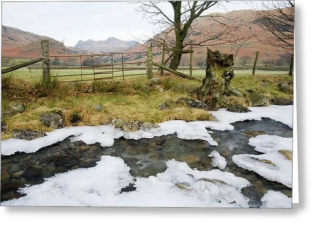 Ice On Greenburn Beck Greeting Card by Ashley Cooper