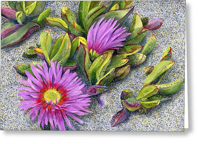 Ocean Shore Greeting Cards - Ice Plant Greeting Card by Karen Wright