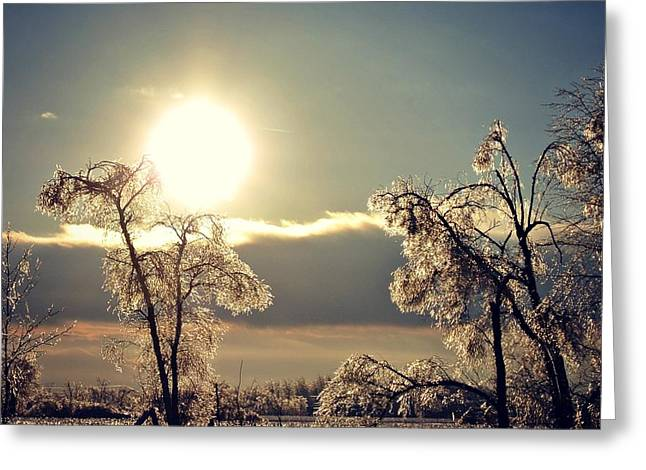 Ice Reflection Greeting Card by Dawdy Imagery
