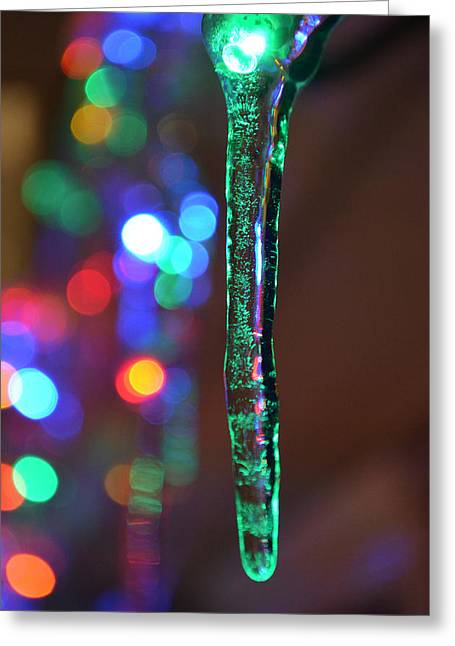 Winter In Maine Greeting Cards - Ice Storm Christmas 2 Greeting Card by Ken DErrico