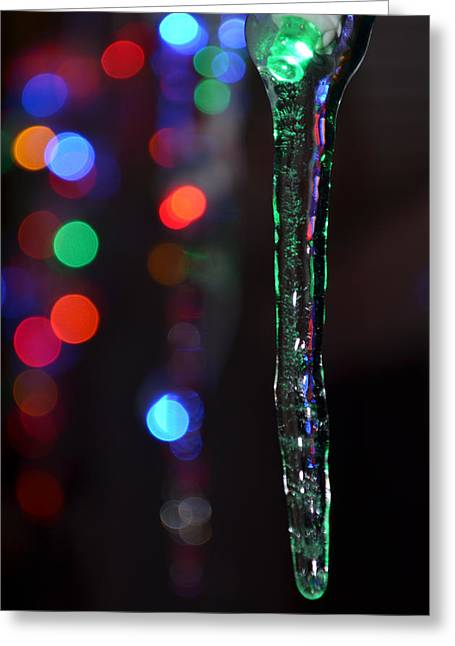 Winter In Maine Greeting Cards - Ice Storm Christmas  Greeting Card by Ken DErrico