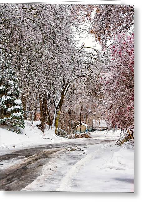 Storm Prints Photographs Greeting Cards - Ice Storm Greeting Card by Steve Harrington