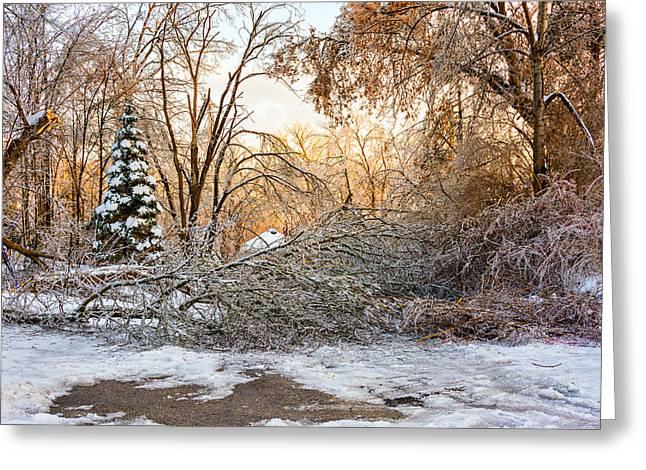 Ice Storm...day 2 Greeting Card by Steve Harrington