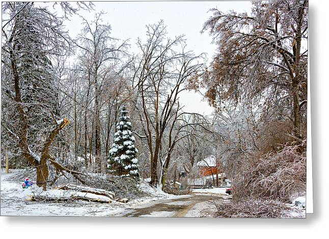 Storm Prints Greeting Cards - Ice Storm...Day 6 Greeting Card by Steve Harrington
