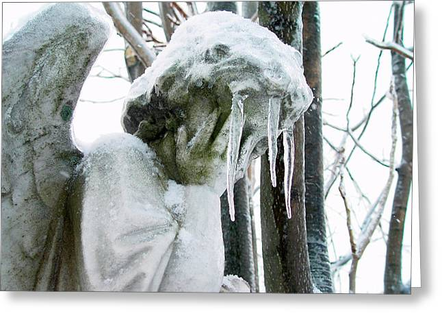 Weather Photographs Greeting Cards - Ice Veil Greeting Card by Gothicolors Donna Snyder