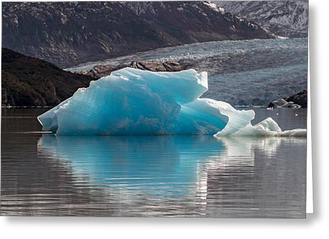 Reflections On Snow Greeting Cards - Iceberg In A Lake, Gray Glacier, Torres Greeting Card by Panoramic Images