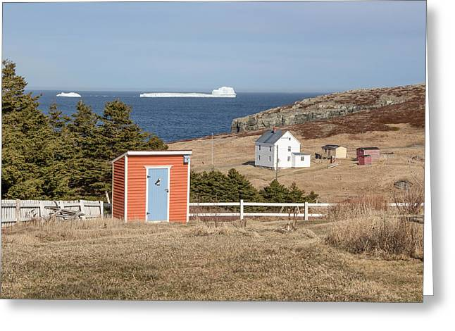 Sheds Greeting Cards - Iceberg in Elliston Greeting Card by Crystal Fudge