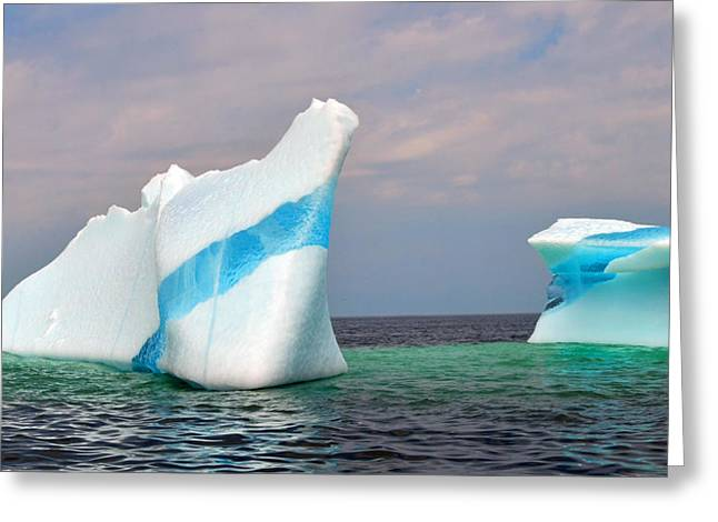 Blue Greeting Cards - Iceberg off the Coast of Newfoundland Greeting Card by Lisa  Phillips