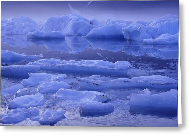 Portage Greeting Cards - Icebergs & Fog Portage Lake Greeting Card by Vance Gese
