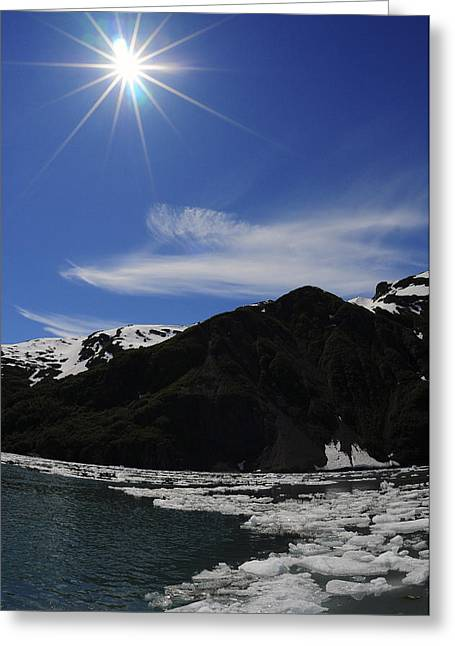 Surprise Greeting Cards - Icebergs From Surprise Glacier Gather Greeting Card by Bill Rome