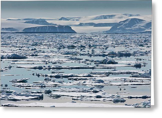 Environmental Issue Greeting Cards - Icebergs, Hinlopen Strait, Spitsbergen Greeting Card by Panoramic Images