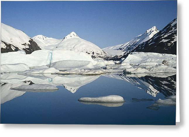 Portage Greeting Cards - Icebergs In Lake Portage Glacier Greeting Card by Danny Daniels