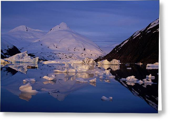 Portage Greeting Cards - Icebergs In Portage Lake Bard Peak Greeting Card by Calvin Hall
