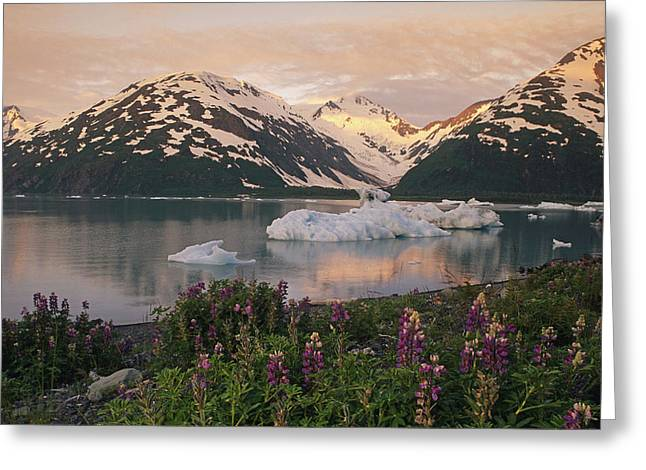 Portage Greeting Cards - Icebergs In Portage Lake Below Byron Greeting Card by Michael DeYoung