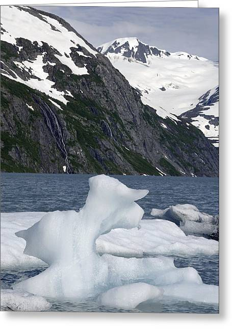 Portage Greeting Cards - Icebergs In Portage Lake During Summer Greeting Card by Mark Newman