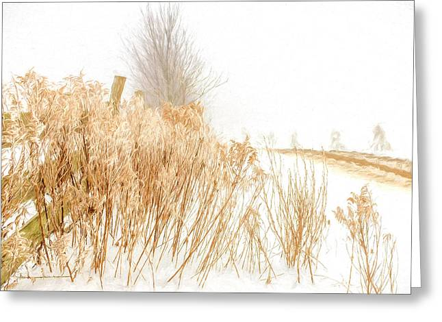 Cornfield Greeting Cards - Iced Goldenrod at fields edge - artistic Greeting Card by Chris Bordeleau