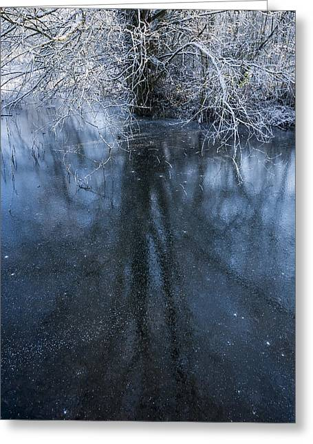 Snowy Stream Greeting Cards - Iced Mirror Greeting Card by Svetlana Sewell