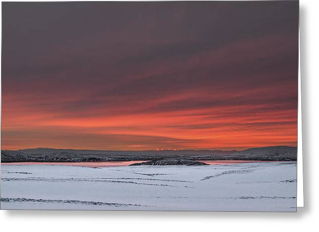 Arctic Rose Greeting Cards - Icelandic Sunrise Greeting Card by Antony Meadley