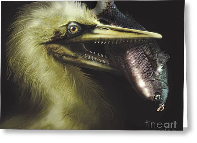 Fish Digital Art Greeting Cards - Ichthyornis Portrait With Fish In Mouth Greeting Card by Jan Sovak