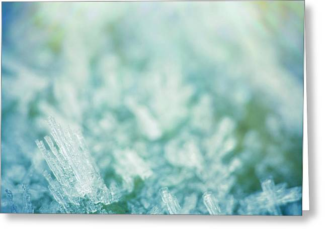 Dreamy Digital Art Greeting Cards - Frost Crystals Greeting Card by Wim Lanclus