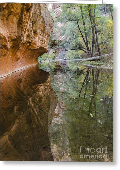 West Fork Greeting Cards - Iconic Greeting Card by Tamara Becker