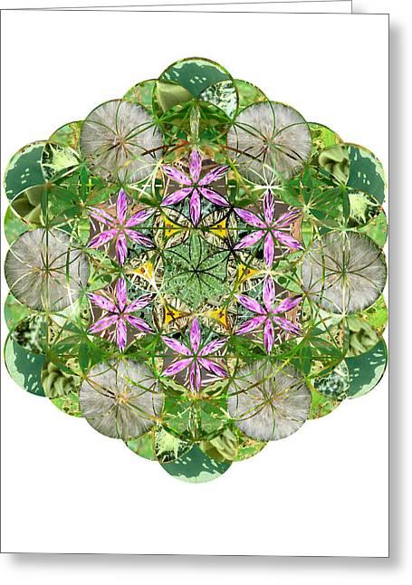 Sacred Geometry Greeting Cards - Icosahedron 3 Greeting Card by Sacred Geometry