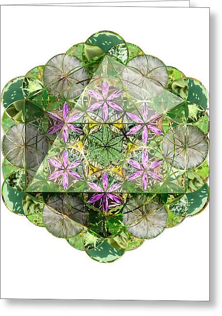 Sacred Geometry Greeting Cards - Icosahedron 4 Greeting Card by Sacred Geometry