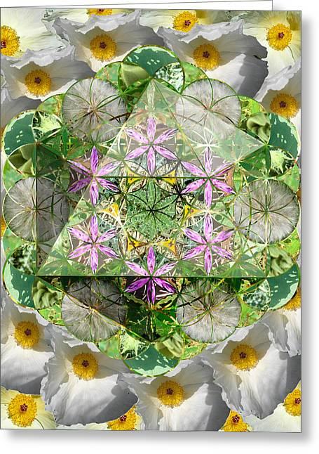Sacred Geometry Greeting Cards - Icosahedron 5 Greeting Card by Sacred Geometry