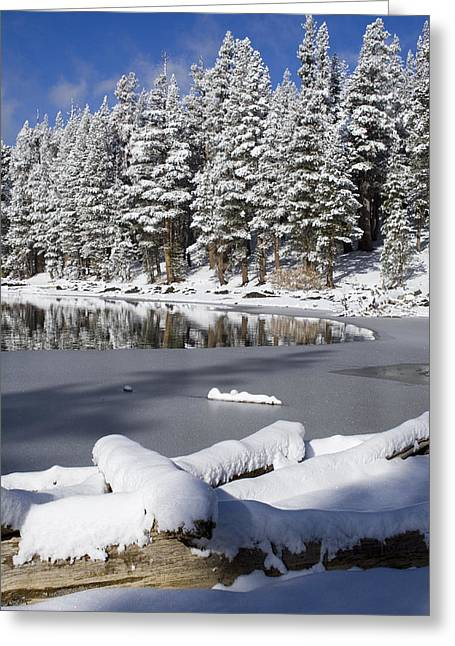 Snow Scenes Greeting Cards - Icy Cold Greeting Card by Chris Brannen
