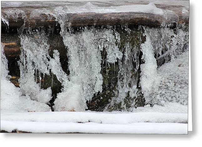 Intrigue Greeting Cards - Icy Creek Greeting Card by Sharon Jones