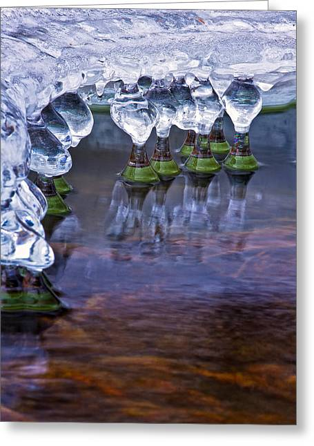 Icy Jewels Greeting Card by Jeff Sinon