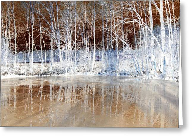 Inversion Digital Art Greeting Cards - Icy Reflections Greeting Card by The Creative Minds Art and Photography