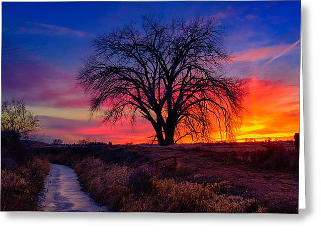 Landscape Art Greeting Cards - Idaho Winter Sunset Greeting Card by Greg Norrell