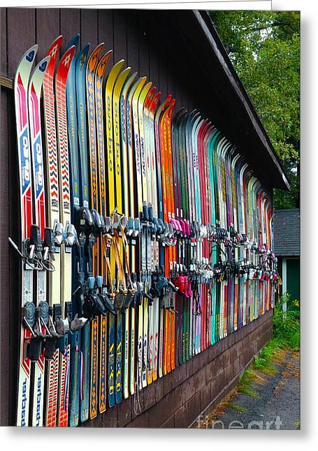 Ski Art Greeting Cards - Idle Fun ... waiting for snow Greeting Card by Janice Sakry